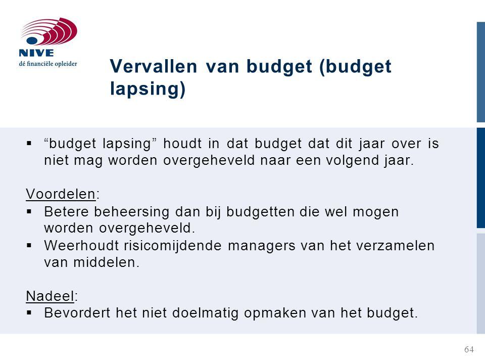 Vervallen van budget (budget lapsing)