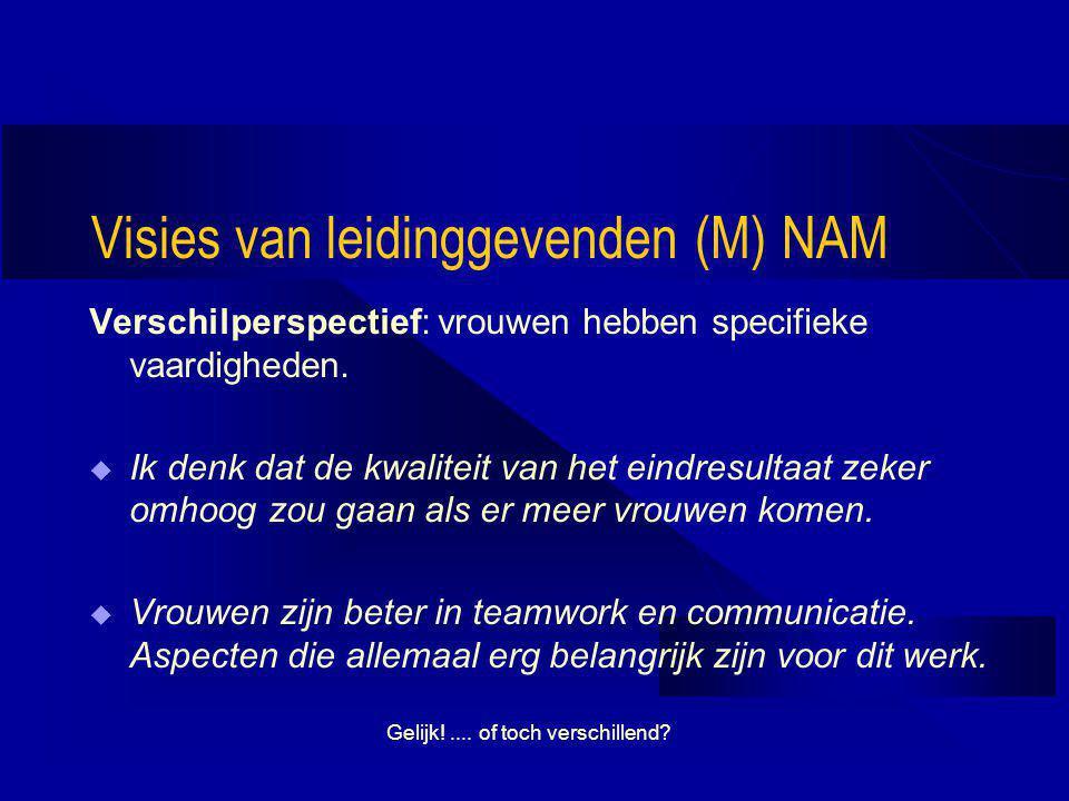 Visies van leidinggevenden (M) NAM