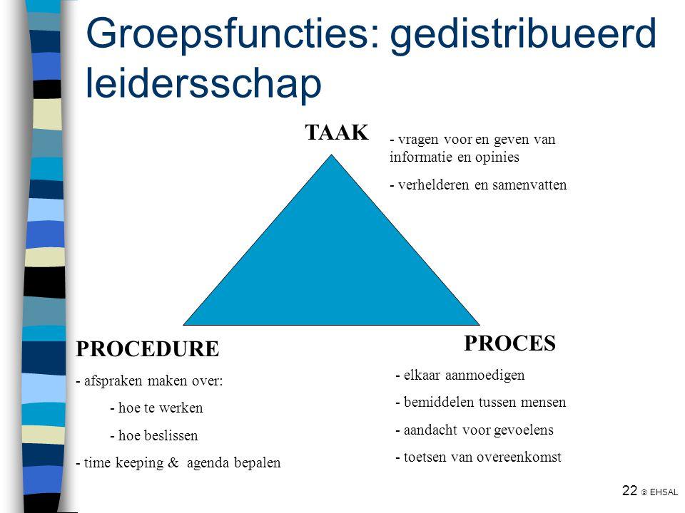 Groepsfuncties: gedistribueerd leidersschap