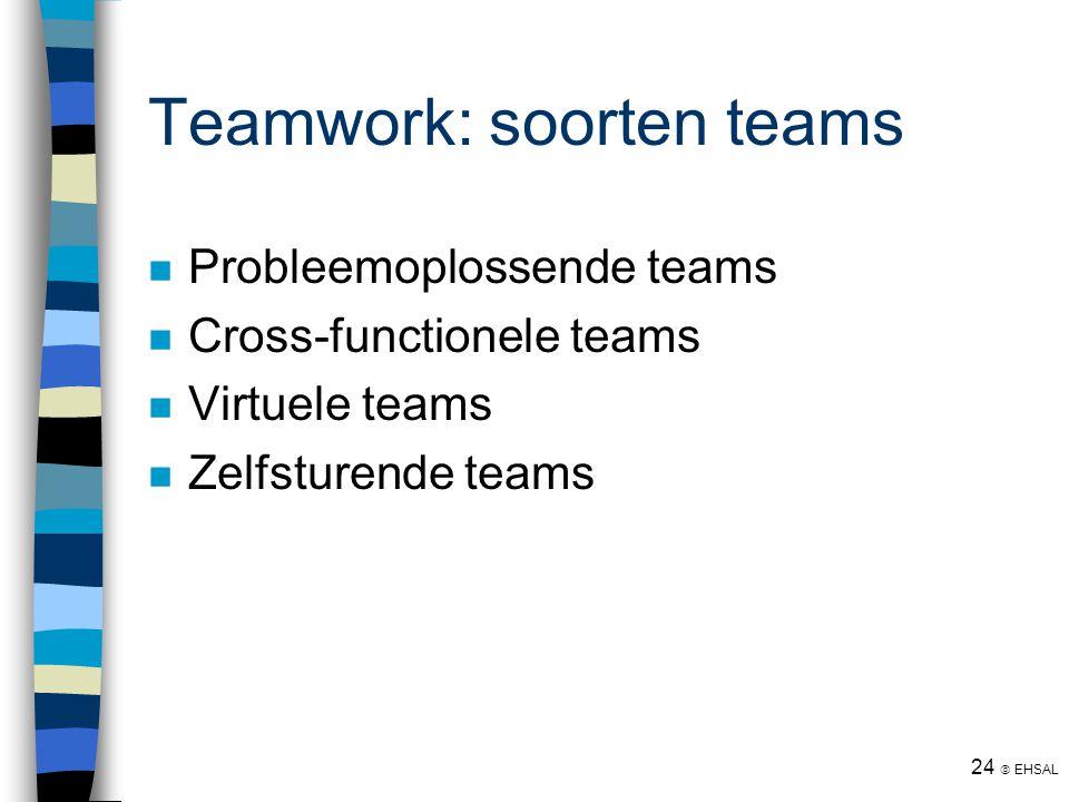 Teamwork: soorten teams