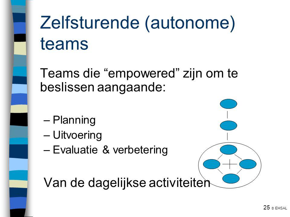 Zelfsturende (autonome) teams