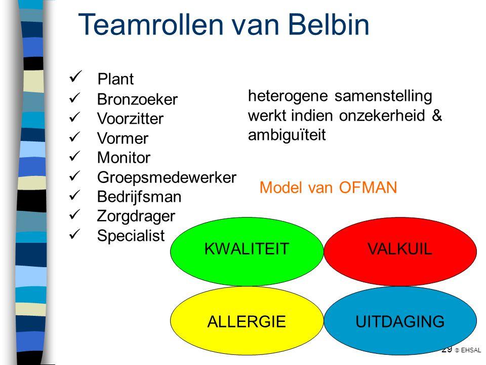 Teamrollen van Belbin Plant Bronzoeker Voorzitter Vormer Monitor