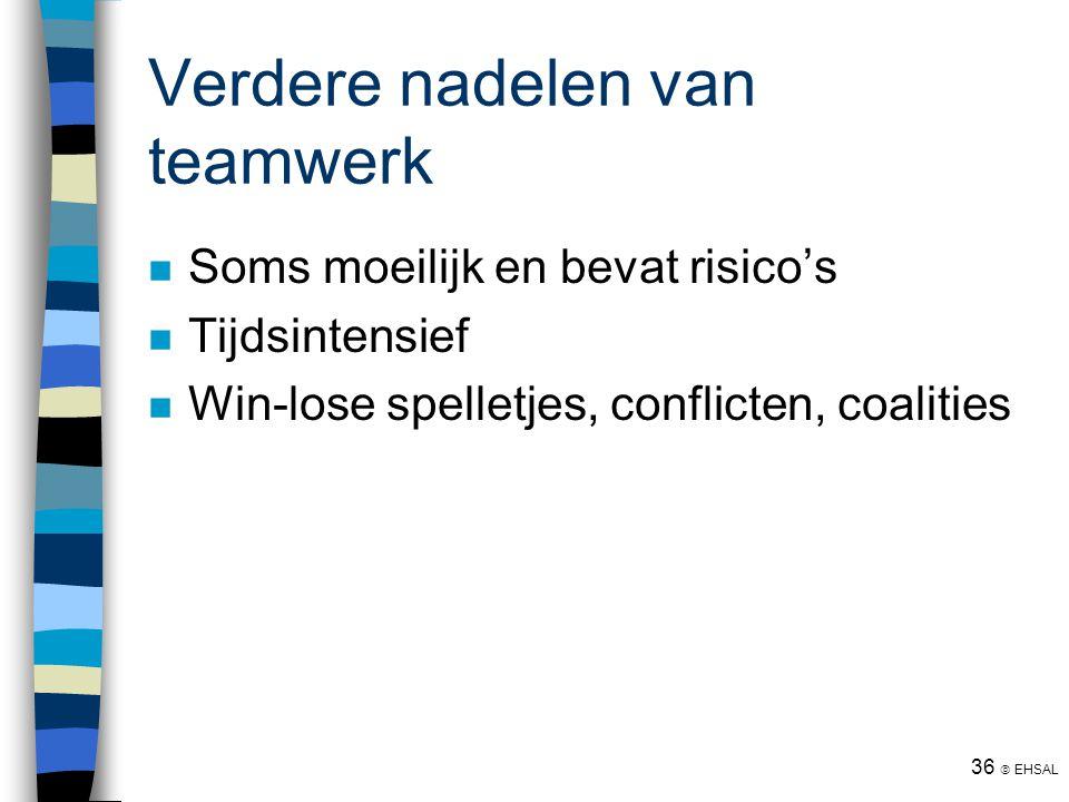 Verdere nadelen van teamwerk
