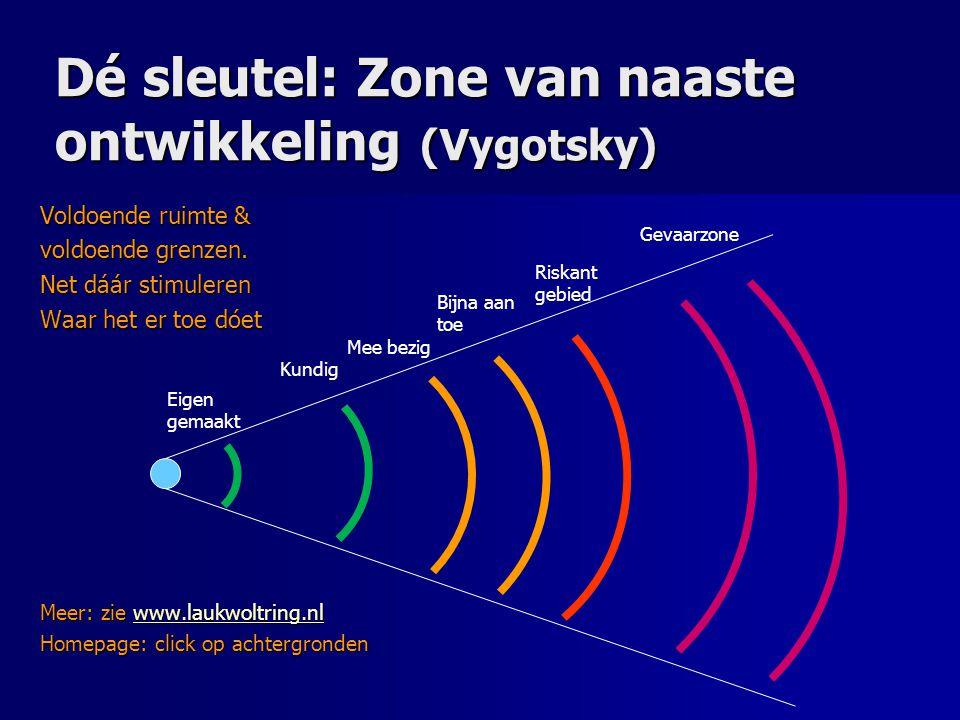 Dé sleutel: Zone van naaste ontwikkeling (Vygotsky)