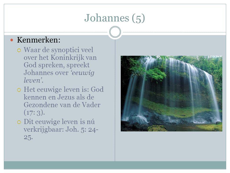 Johannes (5) Kenmerken: