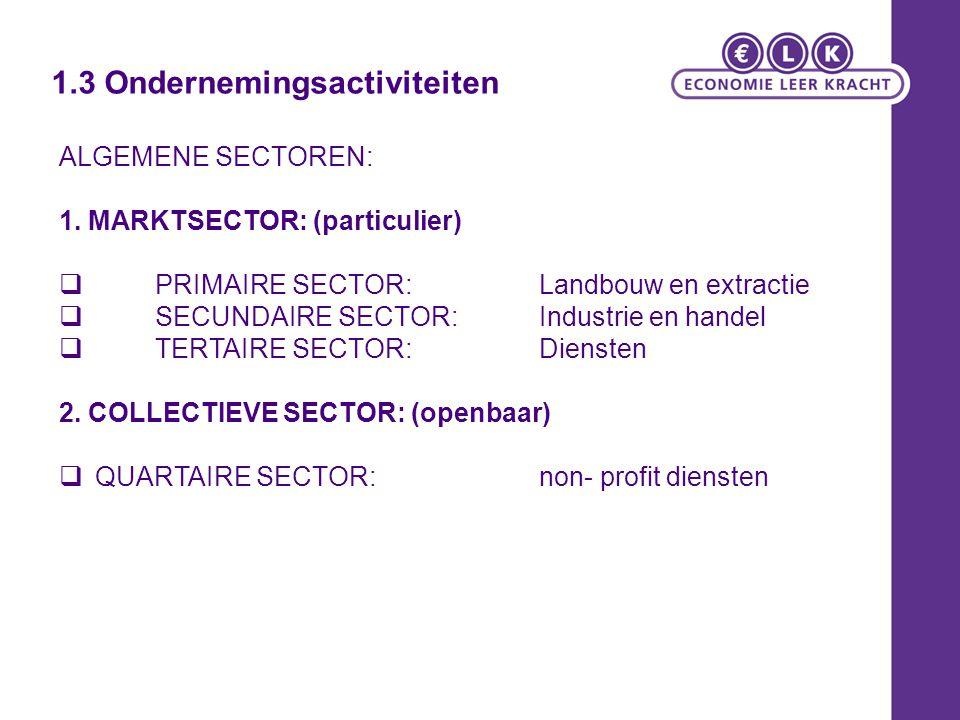 1.3 Ondernemingsactiviteiten