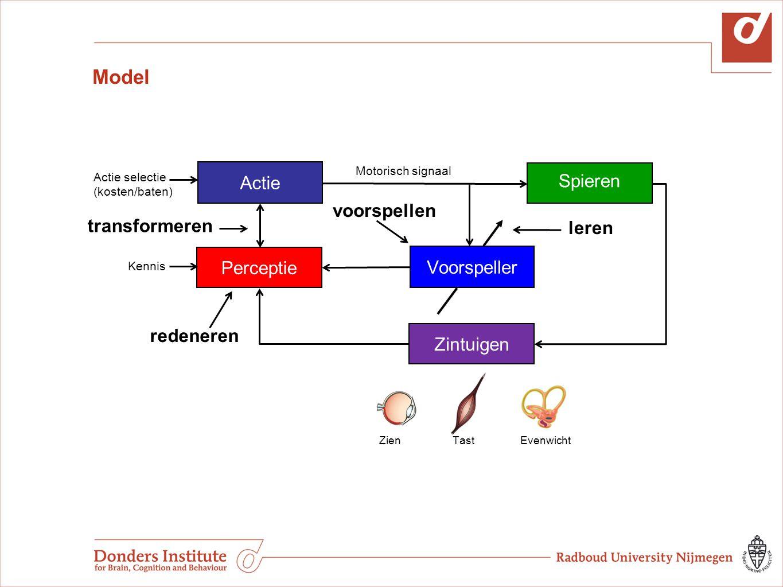 Model Actie Spieren voorspellen transformeren leren Perceptie