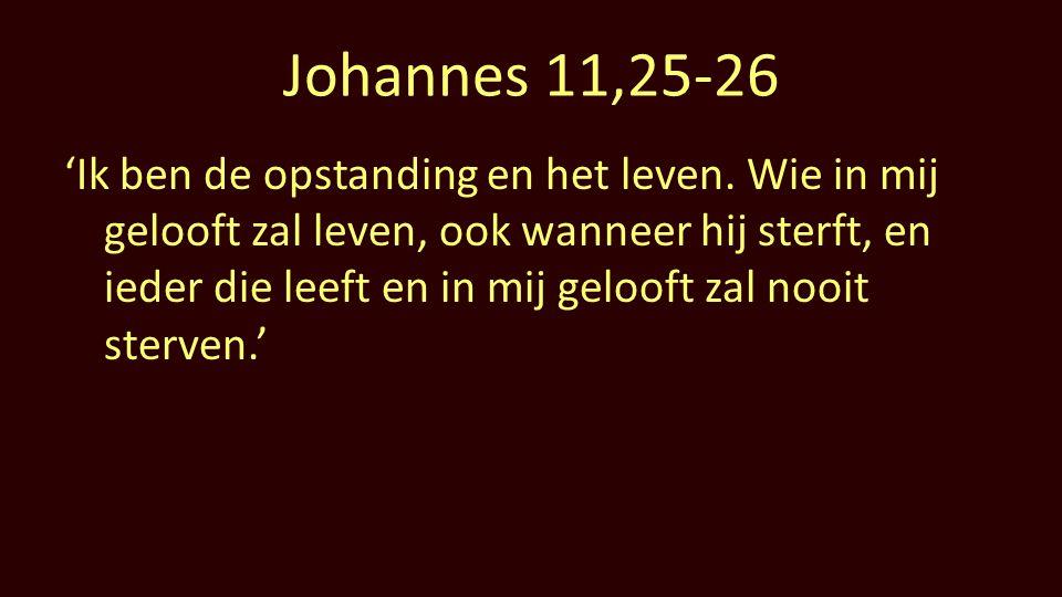 Johannes 11,25-26