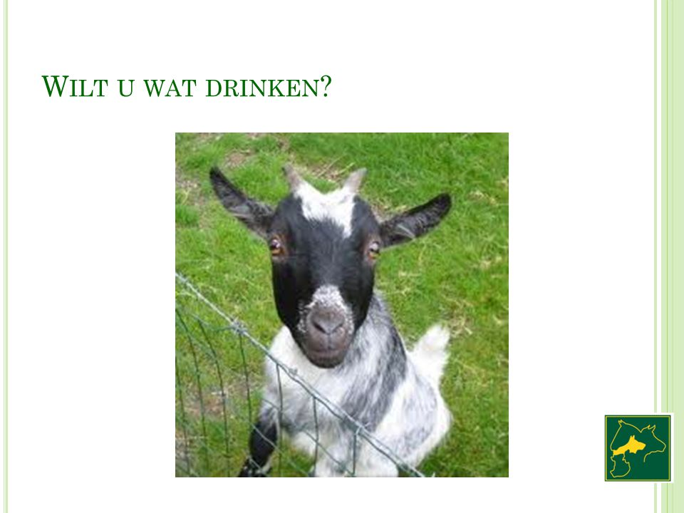 Wilt u wat drinken