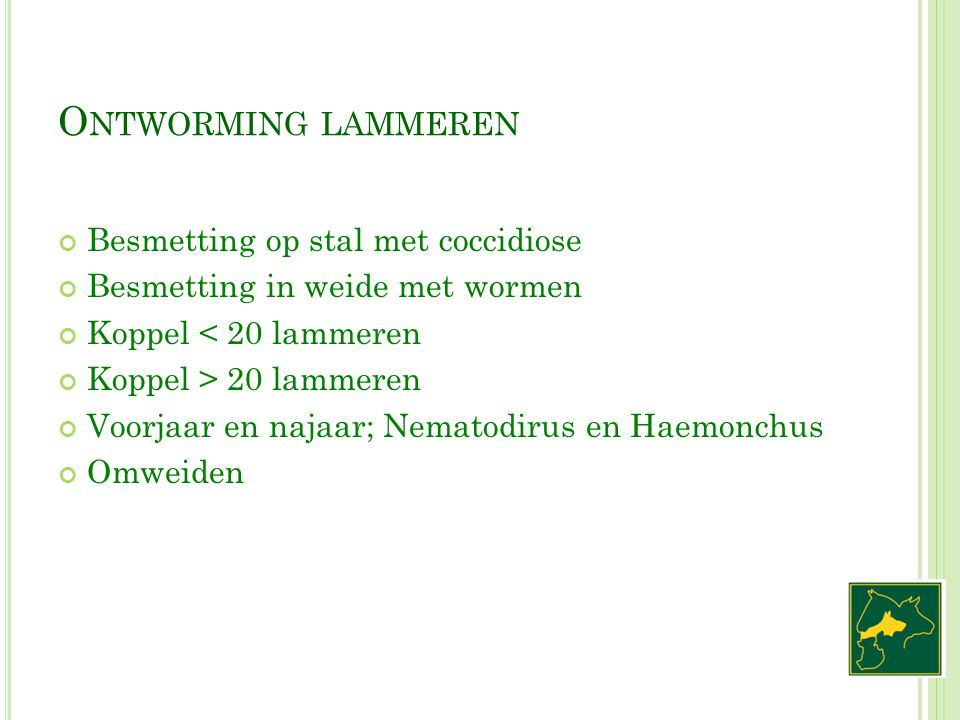 Ontworming lammeren Besmetting op stal met coccidiose