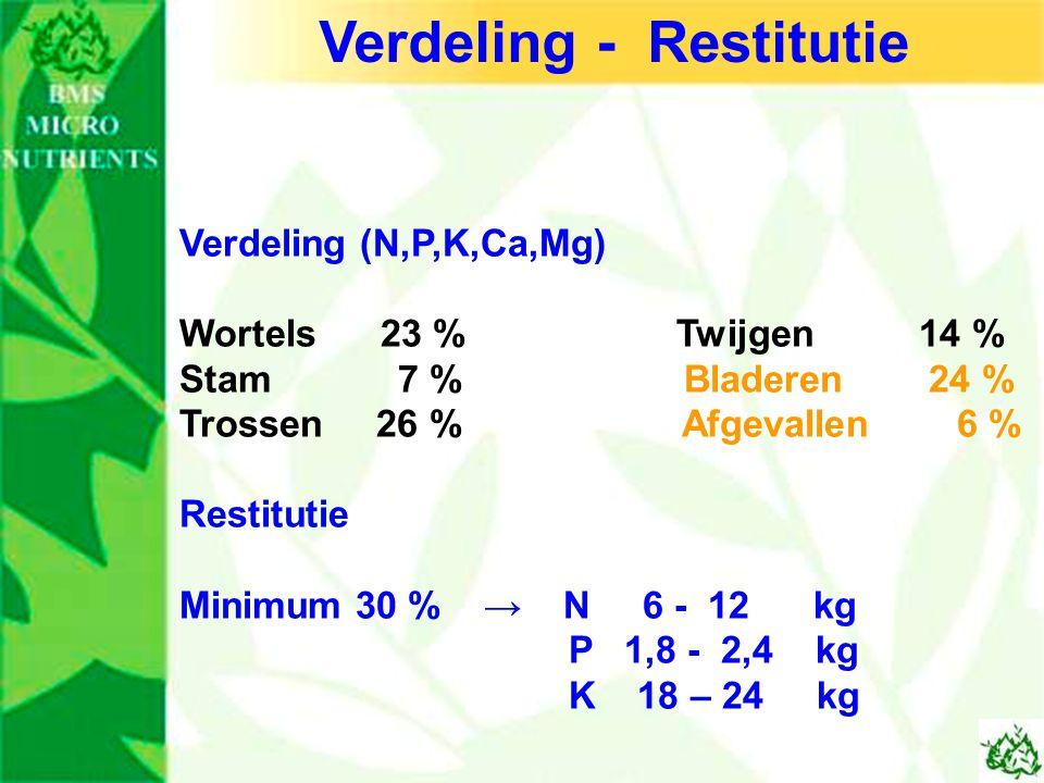 Verdeling - Restitutie