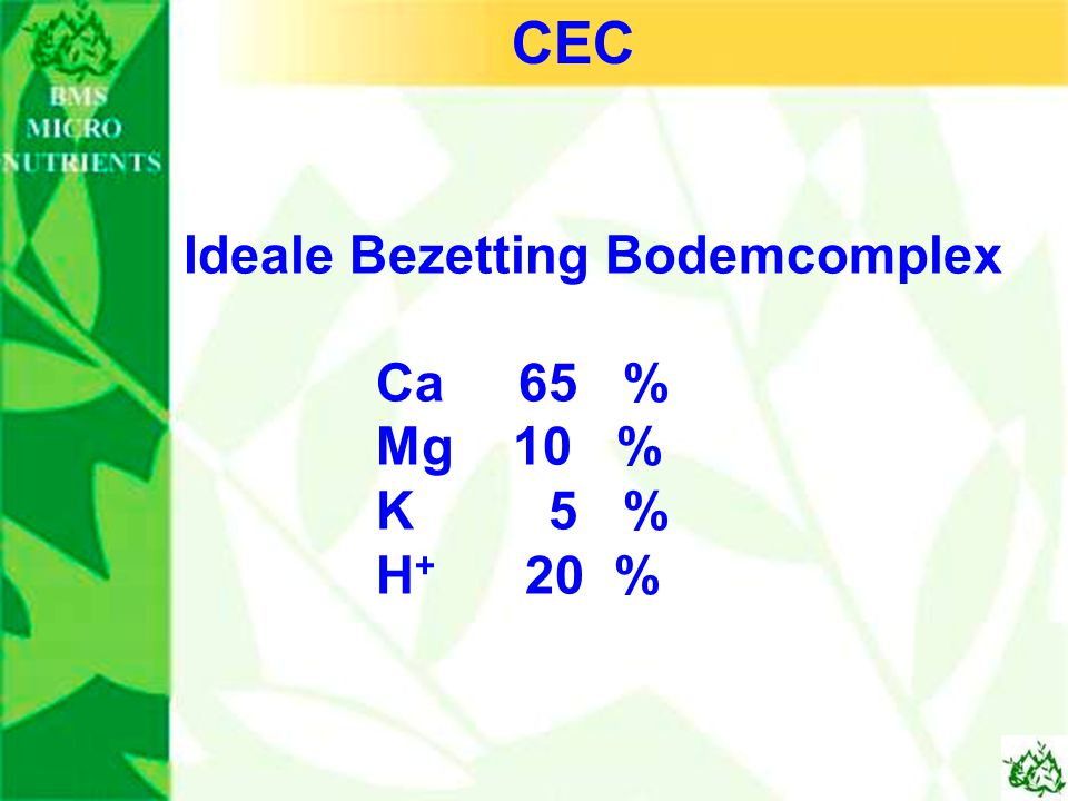 CEC Ideale Bezetting Bodemcomplex Ca 65 % Mg 10 % K 5 % H+ 20 %