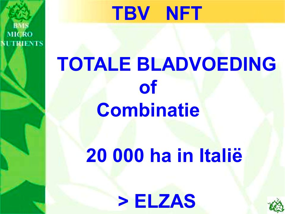 TBV NFT of Combinatie 20 000 ha in Italië > ELZAS