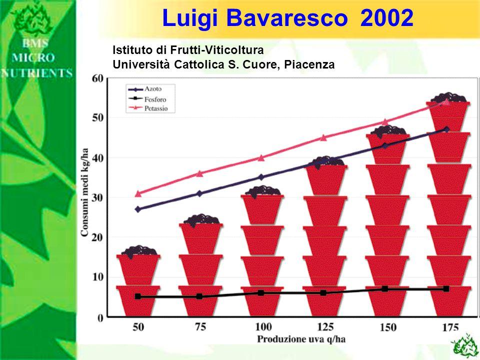 Luigi Bavaresco 2002 Istituto di Frutti-Viticoltura