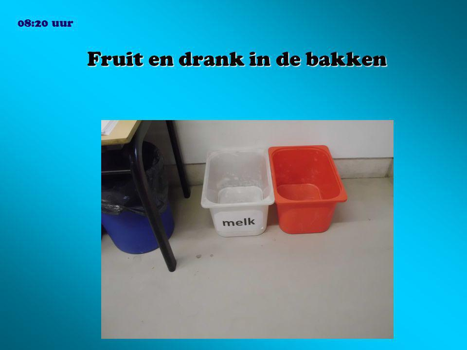 Fruit en drank in de bakken