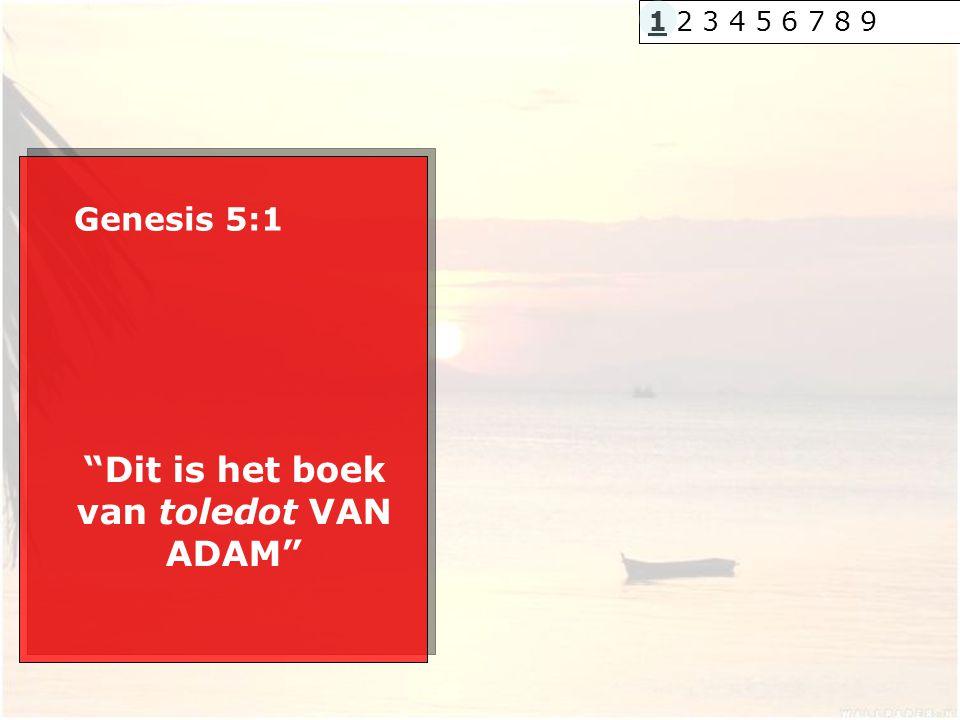 Dit is het boek van toledot VAN ADAM