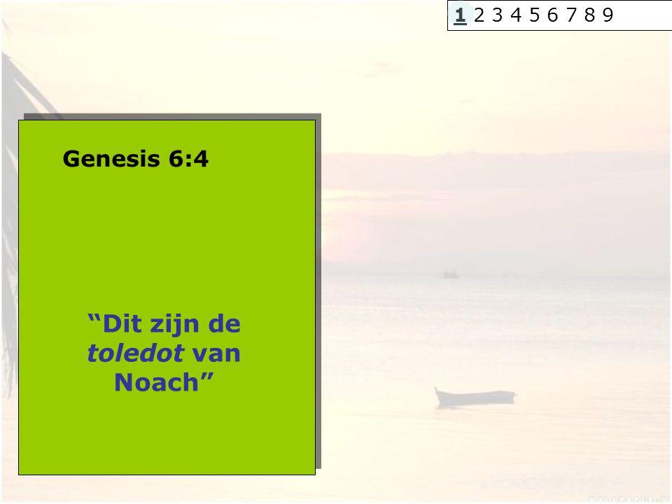 Dit zijn de toledot van Noach