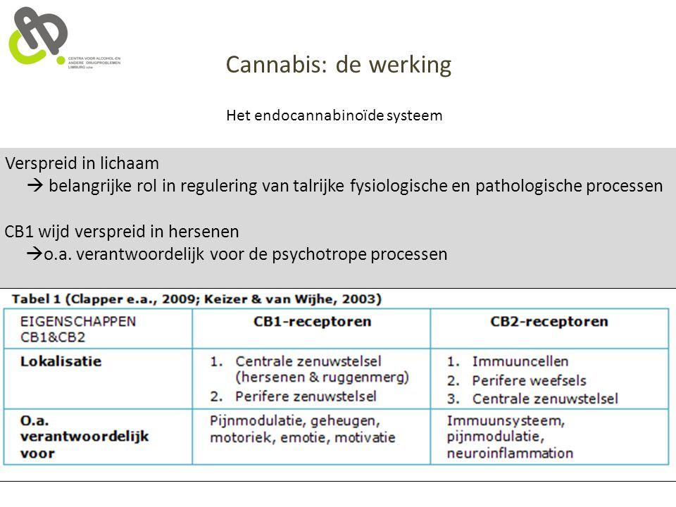 Cannabis: de werking Verspreid in lichaam