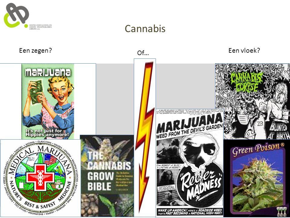 Cannabis Een zegen Een vloek Of…