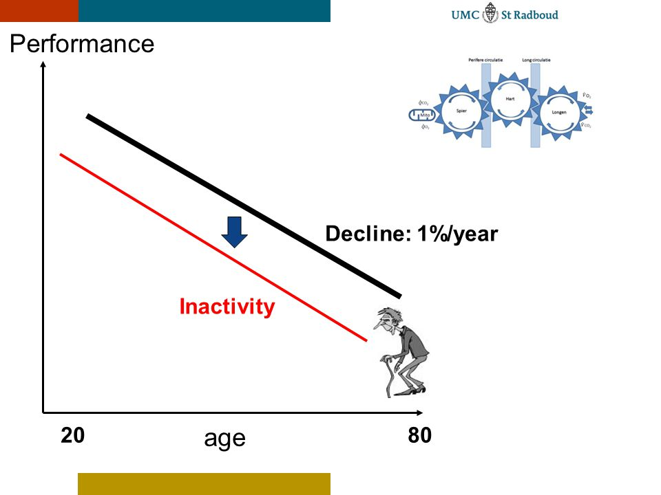 Performance Decline: 1%/year Inactivity 20 age 80