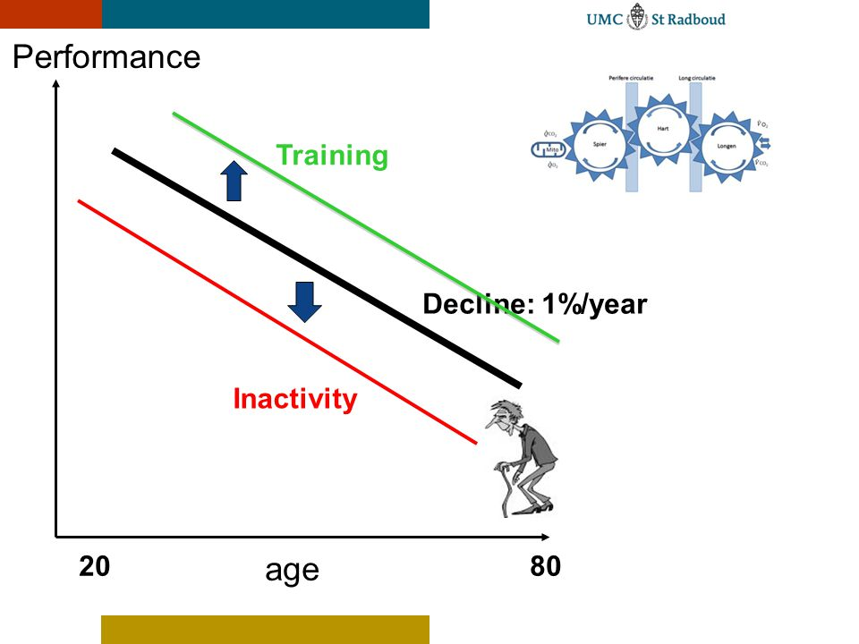 Performance Training Decline: 1%/year Inactivity 20 age 80