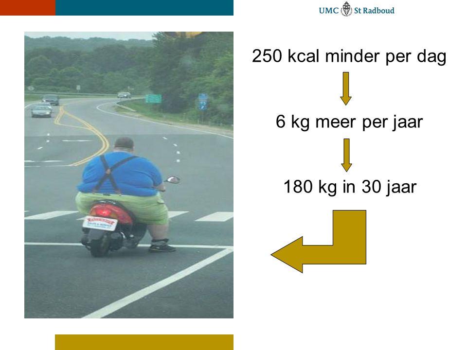 250 kcal minder per dag 6 kg meer per jaar 180 kg in 30 jaar