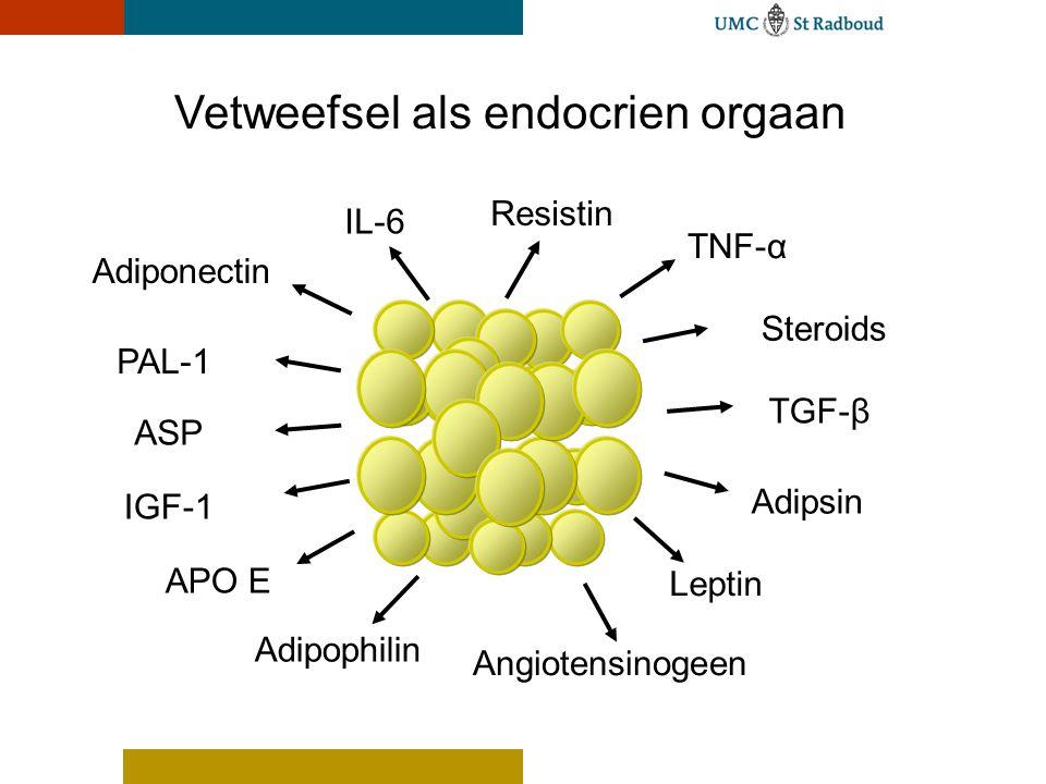 Vetweefsel als endocrien orgaan