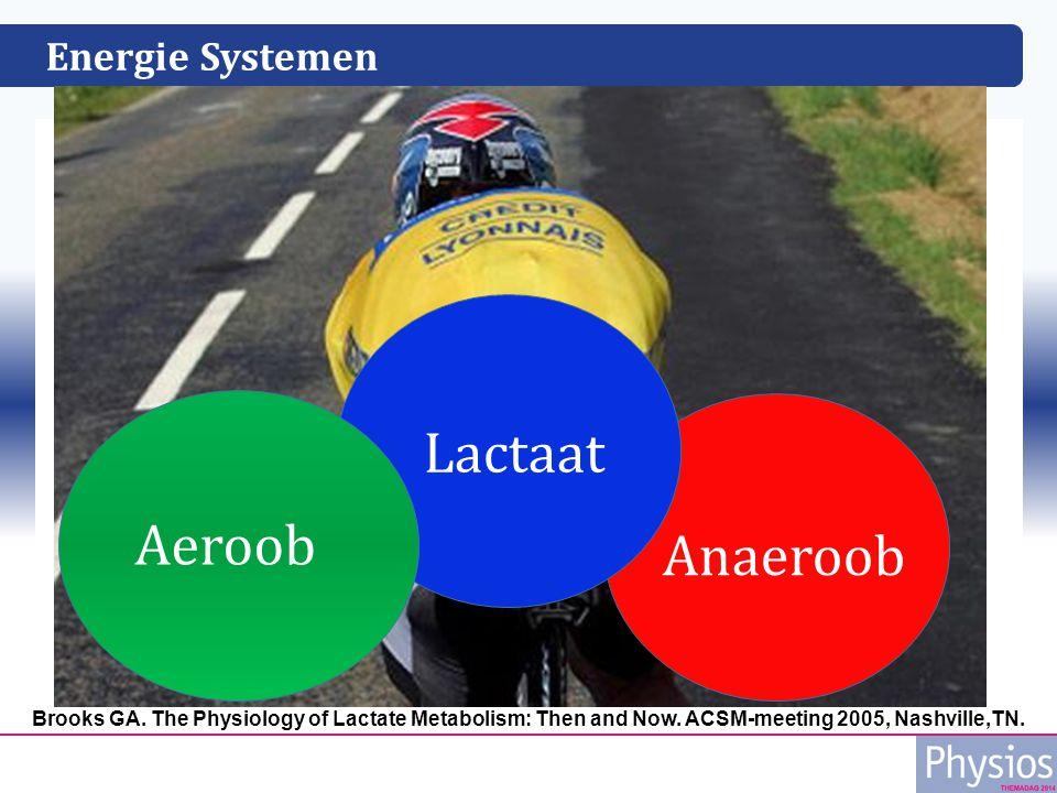 Lactaat Aeroob Anaeroob Energie Systemen Tekst