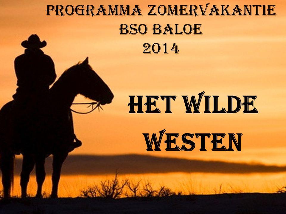 Programma Zomervakantie BSO Baloe 2014