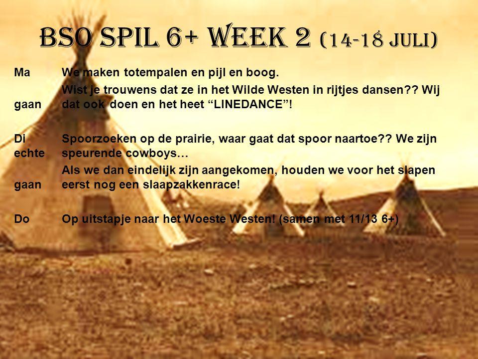 BSO Spil 6+ week 2 (14-18 juli)