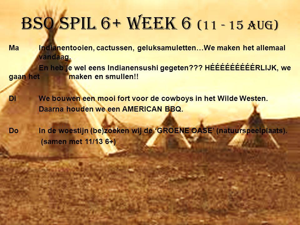 BSO Spil 6+ week 6 (11 - 15 aug)