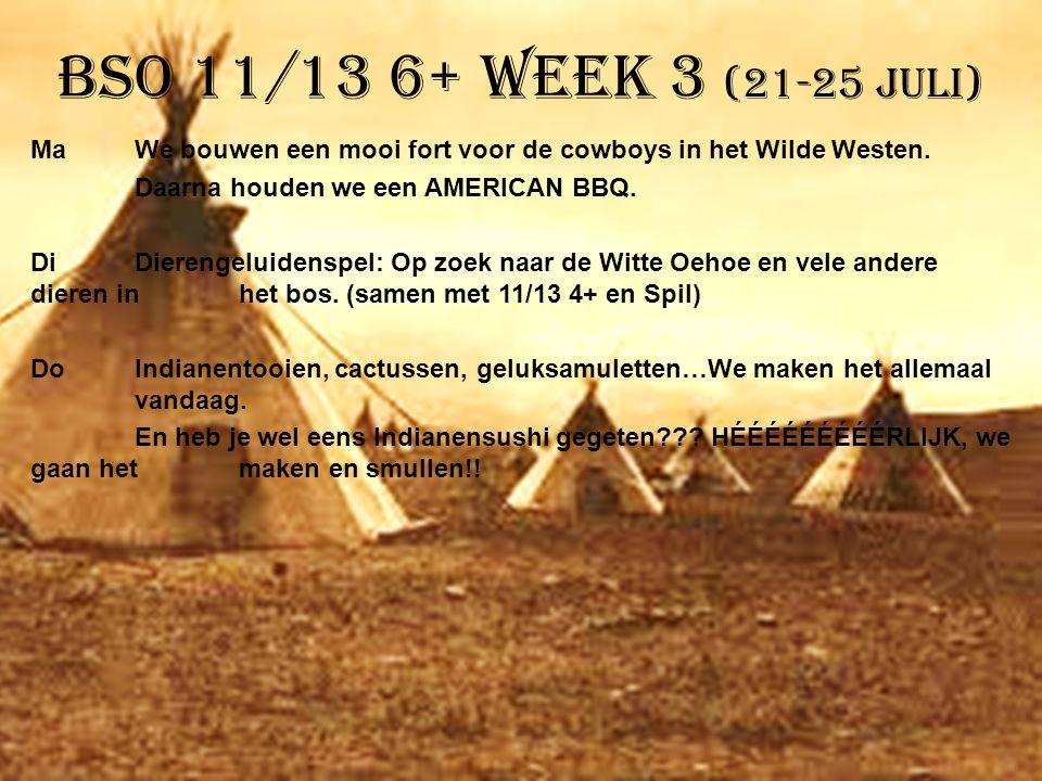 BSO 11/13 6+ week 3 (21-25 juli)