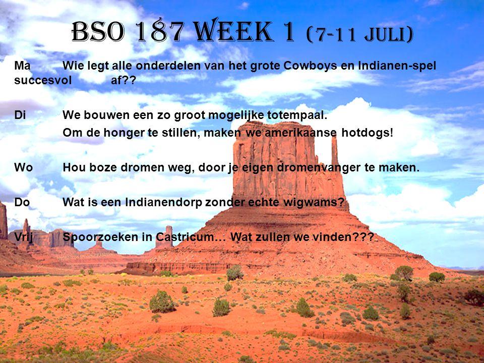 BSO 187 week 1 (7-11 juli)