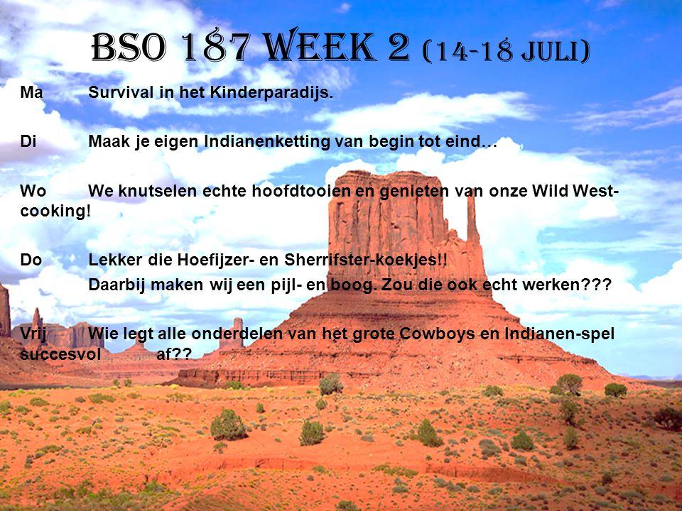 BSO 187 week 2 (14-18 juli)