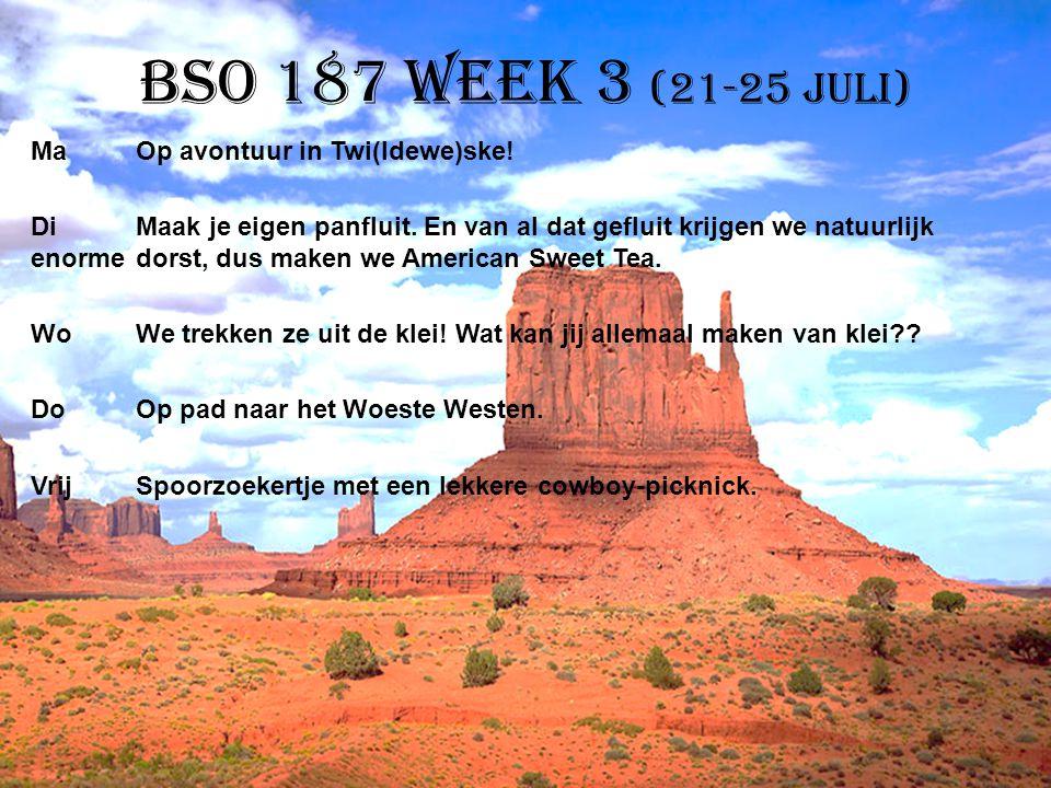 BSO 187 week 3 (21-25 juli)