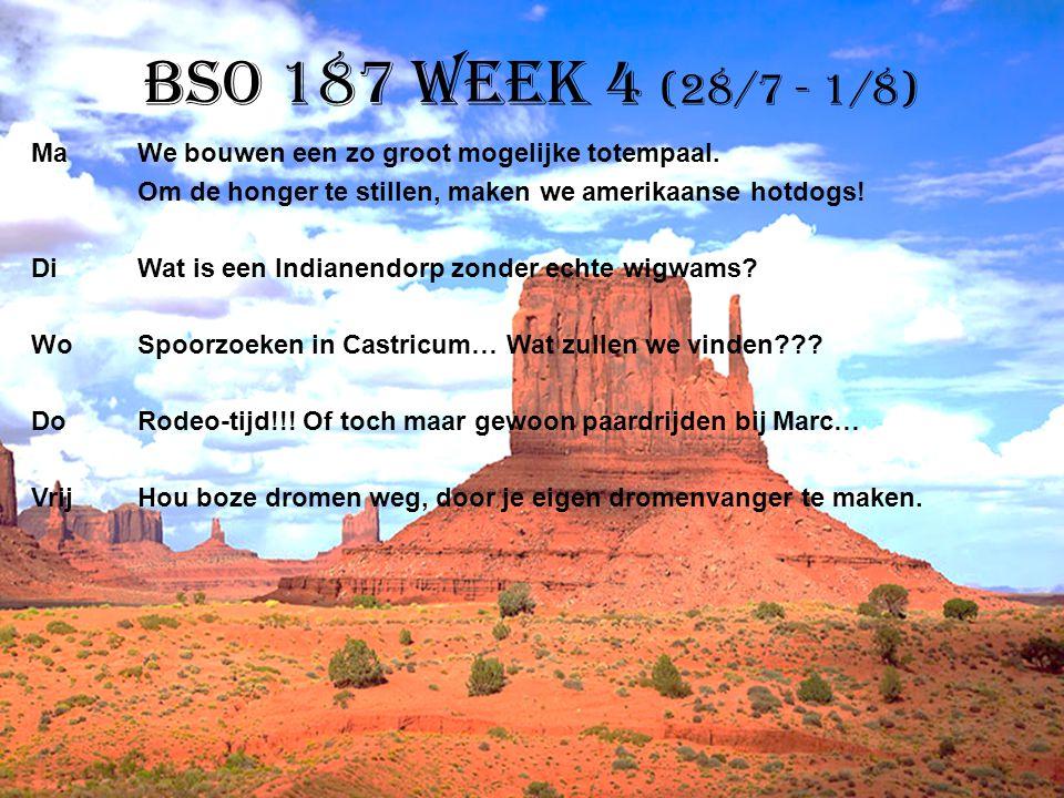 BSO 187 week 4 (28/7 - 1/8)
