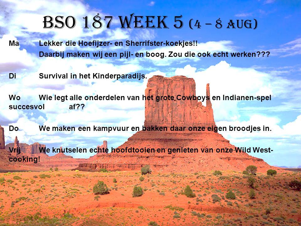 BSO 187 week 5 (4 – 8 aug)