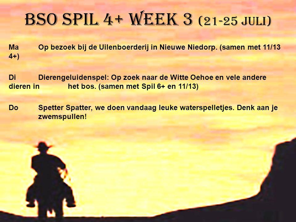 BSO Spil 4+ week 3 (21-25 juli)