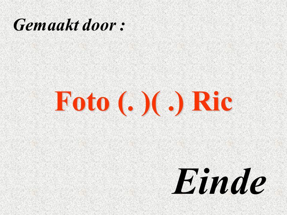 Gemaakt door : Foto (. )( .) Ric Einde
