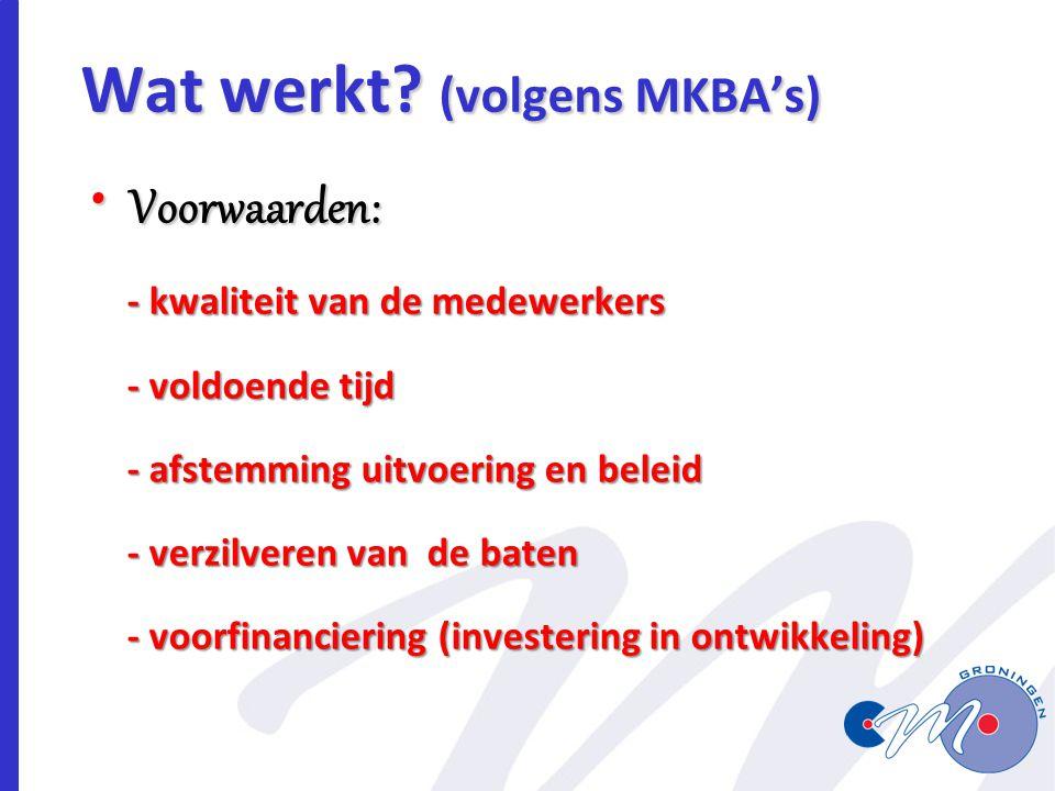 Wat werkt (volgens MKBA's)
