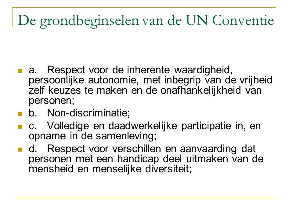 De grondbeginselen van de UN Conventie