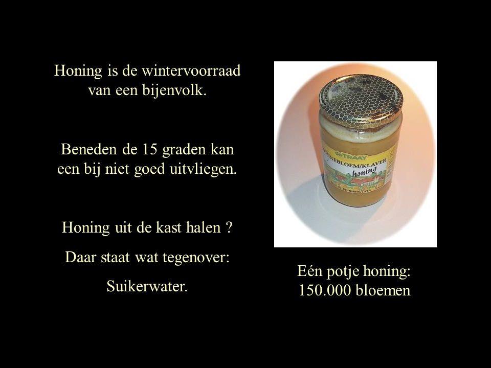 Honing is de wintervoorraad van een bijenvolk.