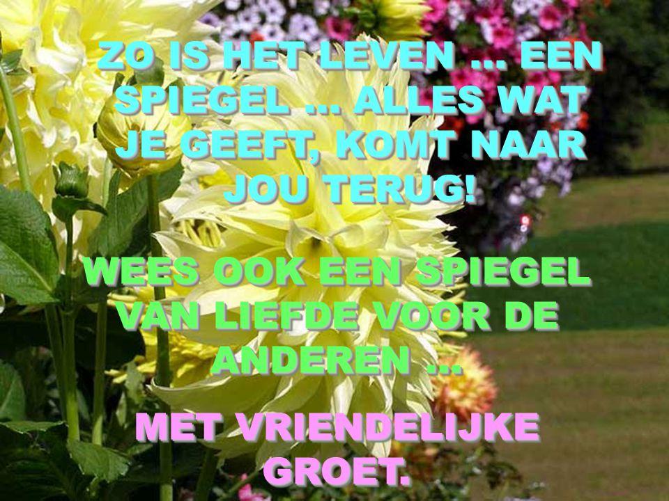 WEES OOK EEN SPIEGEL VAN LIEFDE VOOR DE ANDEREN ...