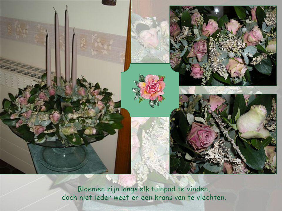 M Bloemen zijn langs elk tuinpad te vinden,