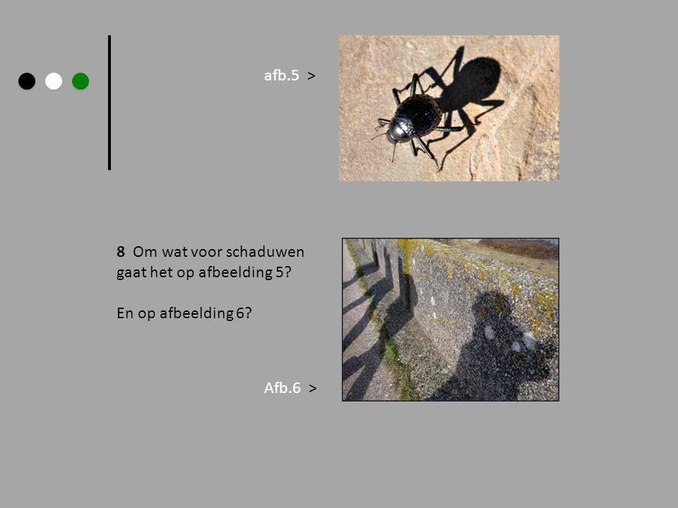 afb.5 > 8 Om wat voor schaduwen gaat het op afbeelding 5