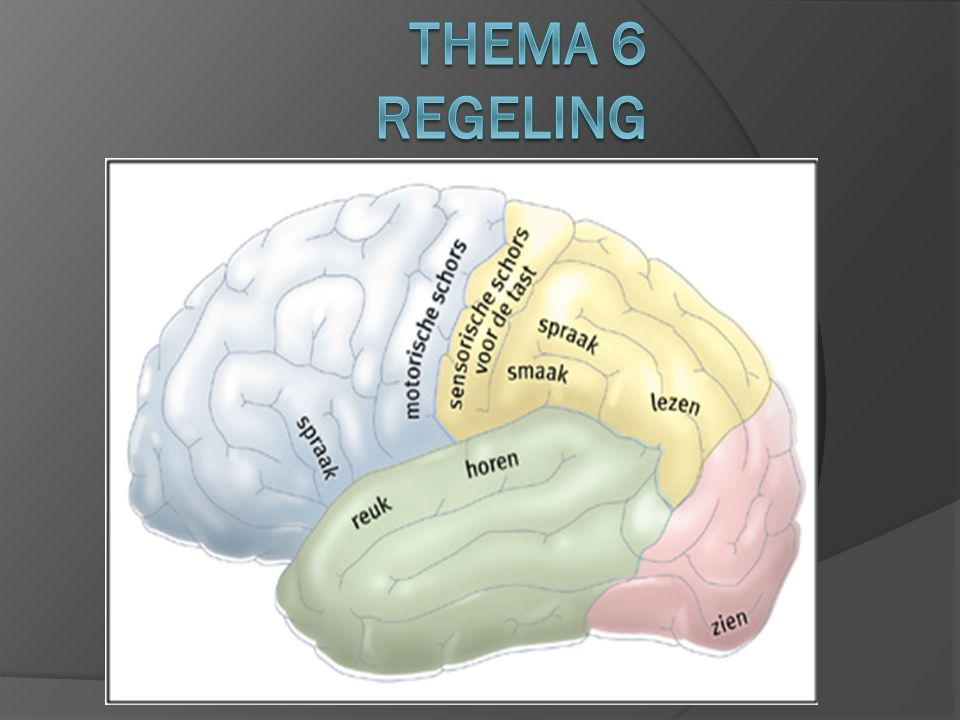 Thema 6 Regeling