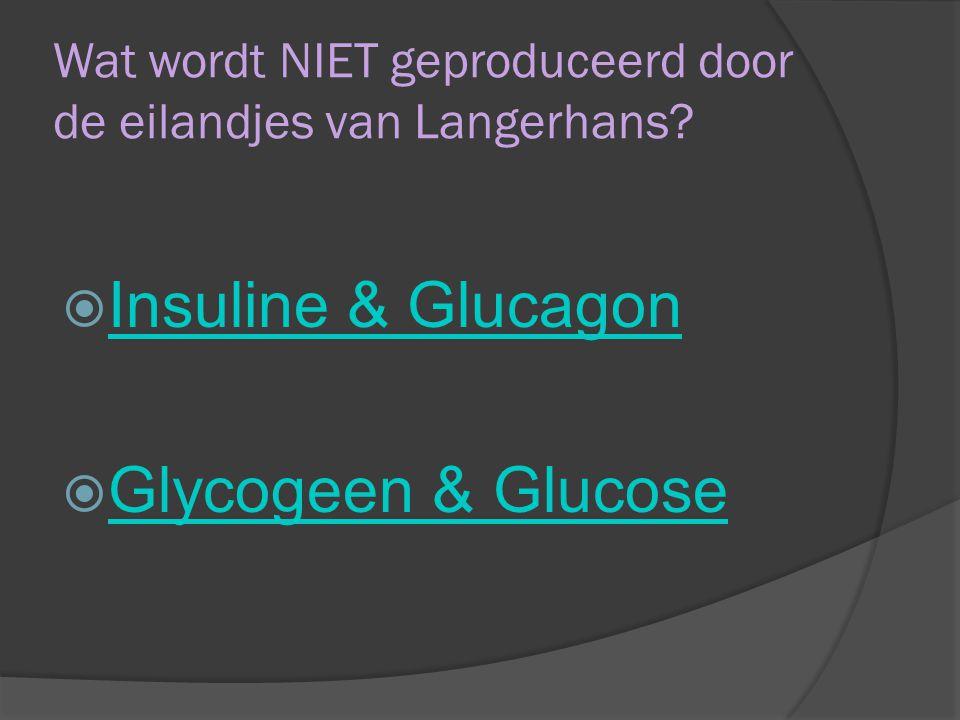 Wat wordt NIET geproduceerd door de eilandjes van Langerhans