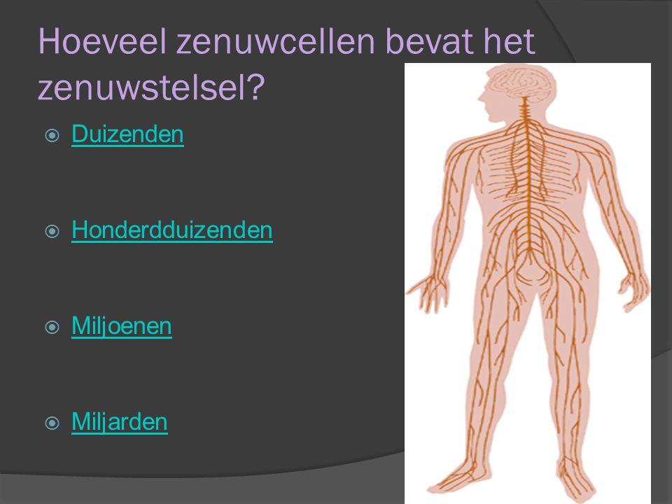 Hoeveel zenuwcellen bevat het zenuwstelsel