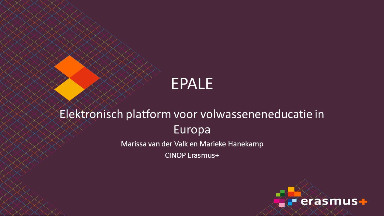 EPALE Elektronisch platform voor volwasseneneducatie in Europa