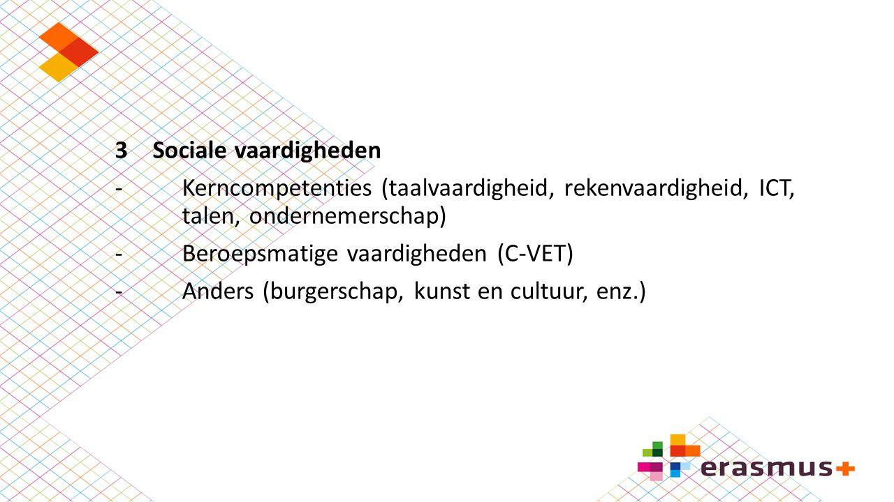 Sociale vaardigheden - Kerncompetenties (taalvaardigheid, rekenvaardigheid, ICT, talen, ondernemerschap)